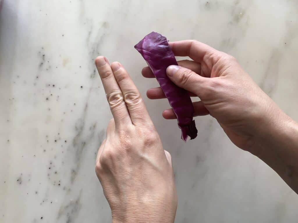 picture of a hand with 2 fingers held together and a long strip of cabbage about the same size
