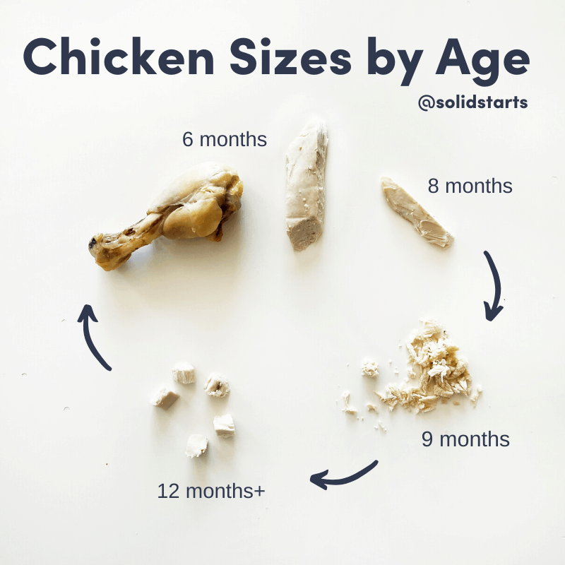 pieces of chicken, starting with a drumstick, then matchstick, then shredded, then bite size pieces by age