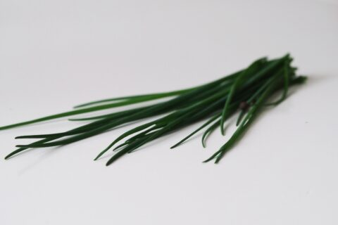 a bunch of chive stalks before being prepared for babies starting solids