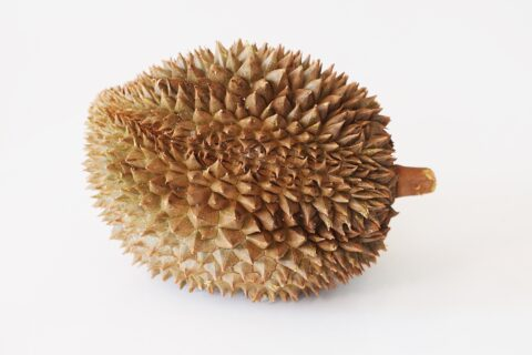 a durian before being prepared for babies starting solids