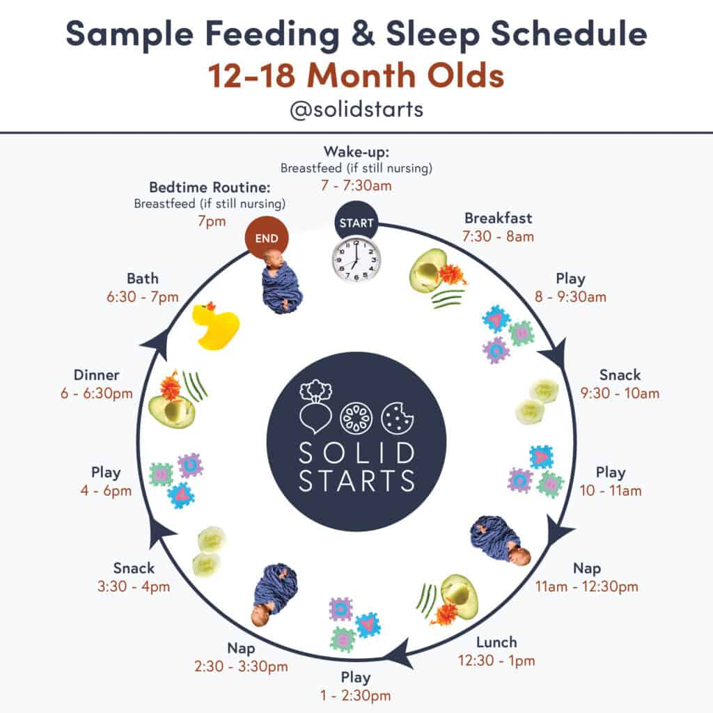 "An infographic entitled ""Sample Feeding & Sleep Schedule for 12 to 18 month olds"" showing wake time of 7am + nursing if still nursing, breakfast at 7:30am, play at 8am, snack at 9:30am, play at 10am, nap at 11am, lunch at 12:30pm, play at 1pm, nap at 2:30pm, snack at 3:30pm, play at 4pm, dinner at 6pm, bath at 6:30pm, bed routine + nursing if still nursing at 7pm."