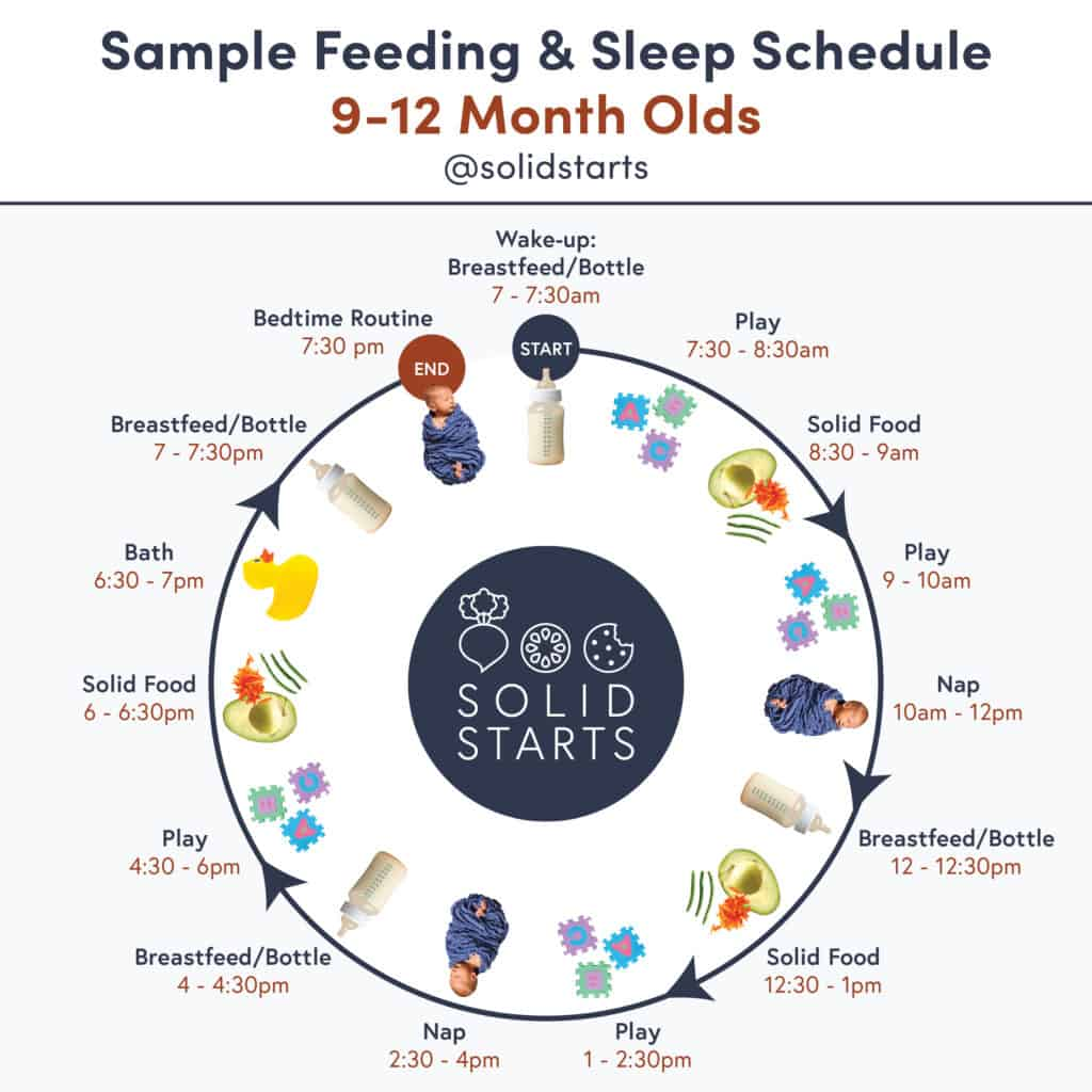 "An infographic entitled ""Sample Feeding & Sleep Schedule for 9 to 12 month olds"" showing wake time of 7am with a bottle, play time at 7:30am, solids at 8:30am, play at 9am, nap at 10am, bottle at 12pm, solid food at 12:30pm, play at 1pm, nap at 2:30pm, bottle at 4pm, play at 4:30pm, solid food at 6pm, bath at 6:30pm, bottle at 7pm, bed routine at 7:30pm."