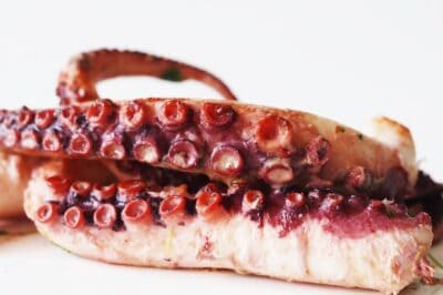 two octopus arms before being sliced for babies starting solids