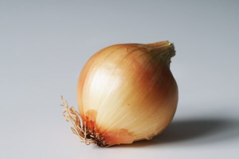 a yellow onion before being prepared for babies starting solids