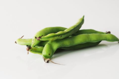 fava beans before being prepared for babies starting solids