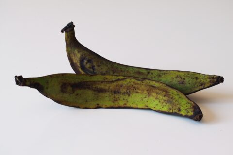two green and brown plantains on a white background for babies starting solids