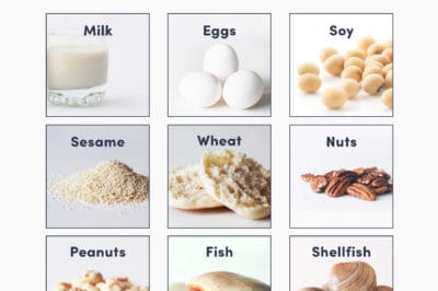 Grid graphic of the top 9 food allergens