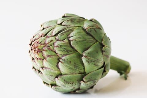 an artichoke flower before being prepared for babies starting solids