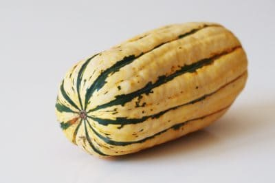 a whole delicata squash on a table before being prepared for babies starting solid food
