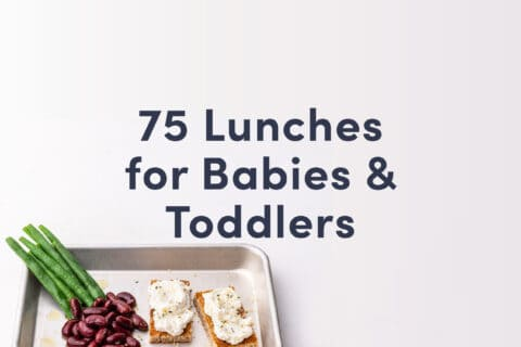 """A guide cover for the Solid Starts lunch recipe book that has the heading: """"75 Lunches for Babies & Toddlers"""" and shows a silver tray with whole string beans, kidney beans and toasts with ricotta cheese on them"""