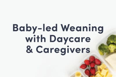 "A guide cover that reads ""Baby-led Weaning with Daycare & Caregivers"" and shows some cheese and berries in a lunch box"