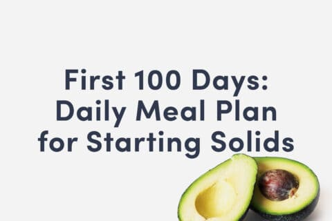 "Guide Cover that Reads ""First 100 Days: Daily Meal Plan for Starting Solids"""