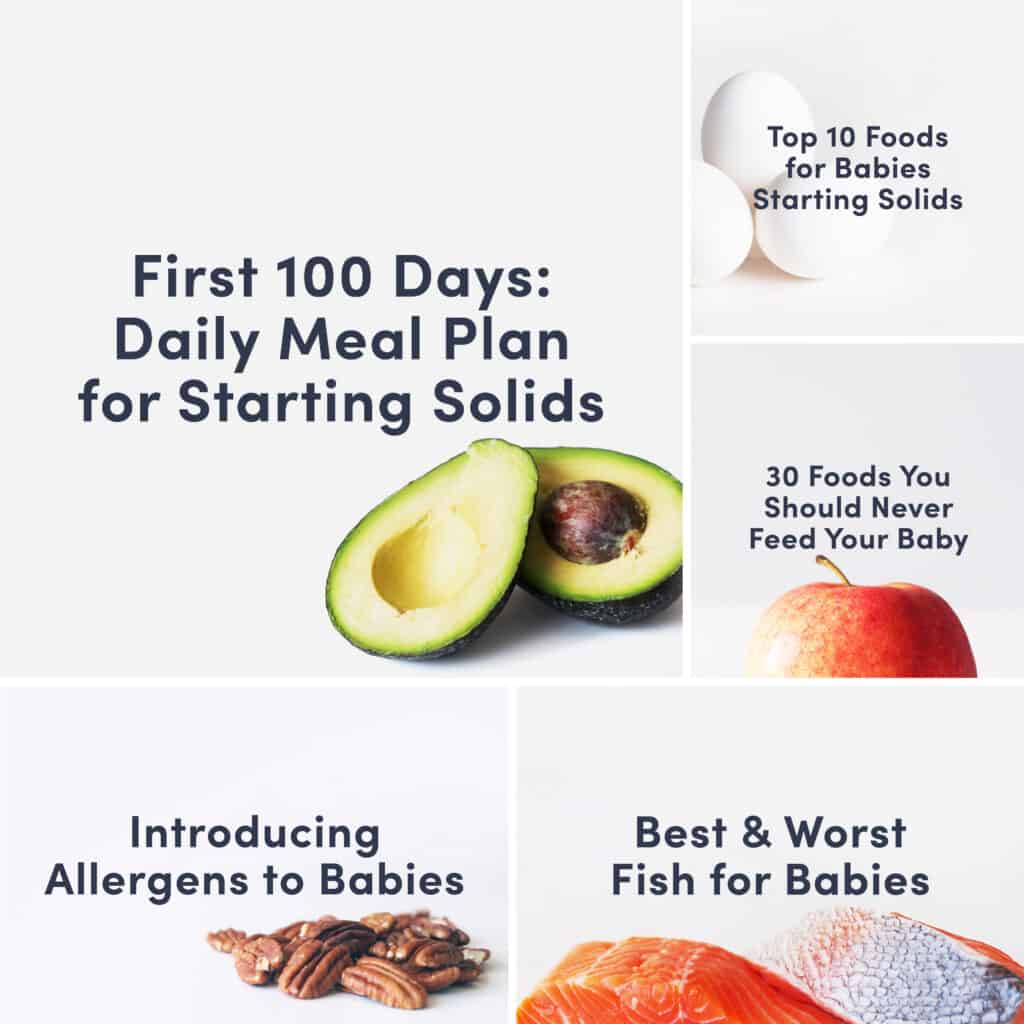 A grid of guides that includes the 100 Day plan, the Top 10 Foods for Babies, the 30 Foods Never to Feed Your Baby, How to Introduce Allergens and Best and Worst Fish for Babies