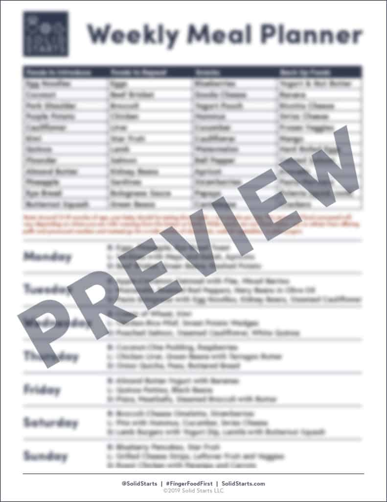 a blurred preview of a filled out meal planner for babies